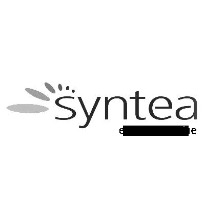 logosyntea